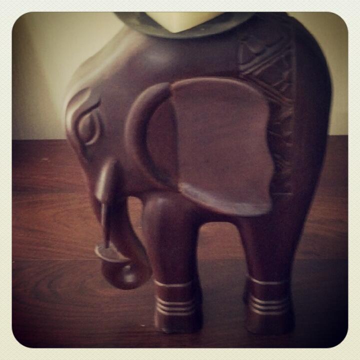 אוסף פילים